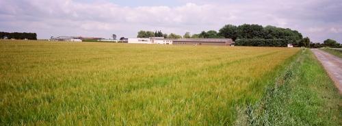Genre et agriculture familiale et paysanne - Toulouse