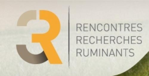 logo 3R