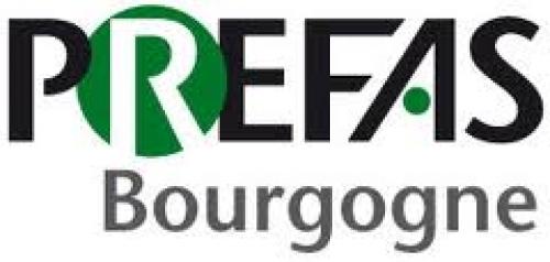 Logo prefas