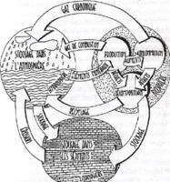 Illustration de l'Approche Systémique
