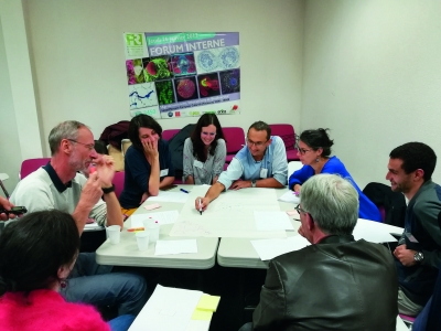Atelier d'échange sur la place des protéines en Occitanie en octobre 2019