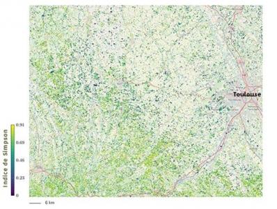 Estimation de la diversité en plantes dans les prairies dans le Sud-Ouest toulousain. Plus les valeurs sont élevées, plus la diversité de Simpson est forte.
