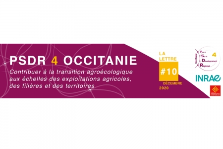 Header de la lettre d'information PSDR4 Occitanie N°10