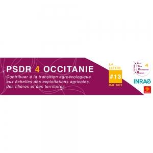 Header de la lettre d'information PSDR4 Occitanie N°13