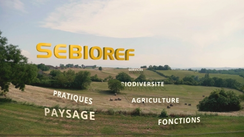 Image Vidéo SEBIOREF